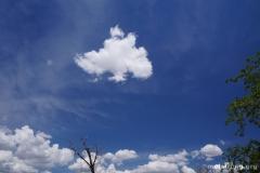MSO_cumulus_22